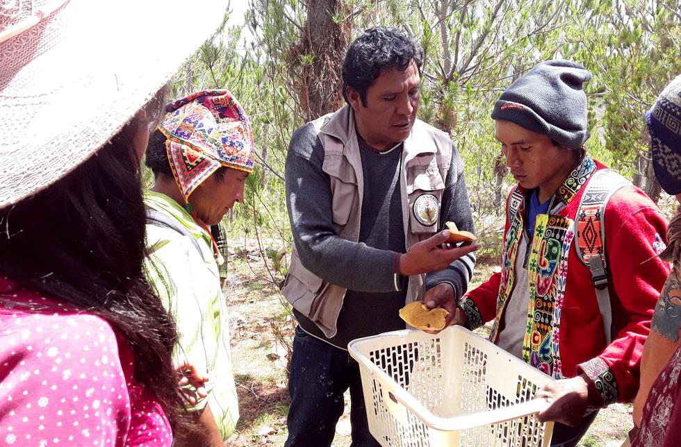 Bolivien: Ein Mann hält einen Wäschekorb, ein anderer Mann hält Pilze in der Hand.