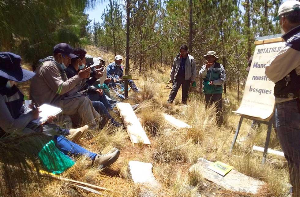 Bolivien: Männer bei einem Holz-Workshop im Wald